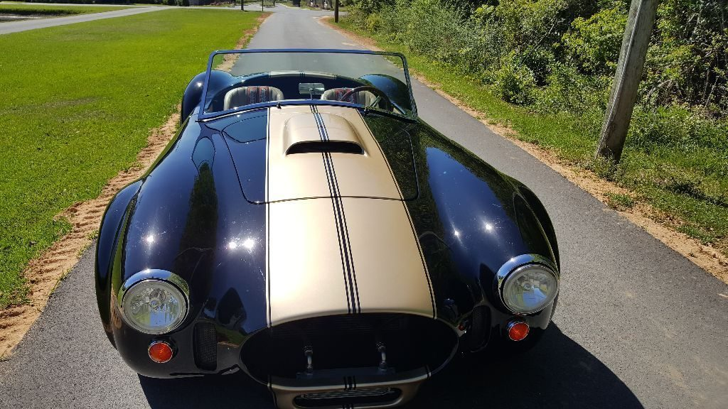 definite head turner 1966 AC Cobra Replica