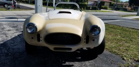 project 1967 Shelby Cobra Replica for sale